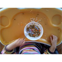 Çocuğum Kendi Kendine Yemek Yemeyi Nasıl Öğrenir?