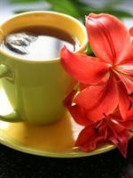 Beşibiryerde Çayı Nasıl Yapılır