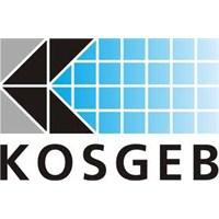 Girişimciler Kosgeb 'den Nasıl Destek Alabilir?