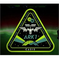 Shepard Fairey Uzay İstasyonu İçin Arma Tasarlıyor