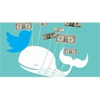 Twitter Hedeflenmiş Reklamlara Başlıyor