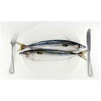 Gebelikte Hangi Balıkları Tüketmeli ?