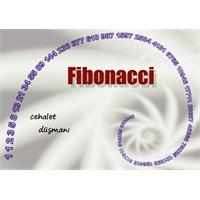 Fibonacci Sayı Dizisi Nedir Ve Nerede Kullanılır?