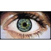 Benim Gözüm: Defterin Ortasındaki Boşluk