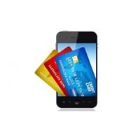 Google Kredi Kartları Geliyor