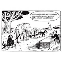 Geniş Tabanlı Eğitim Sistemi Saçmalığı!