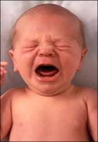 Bebekler Nede Ağlar