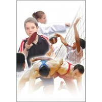 Spor Liseleri Üzerinden Kuşbakışı Eğitim …