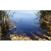 Batı Karadenizde Saklı Cennet Keçi Gölü