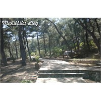 Urla Güvendik Park