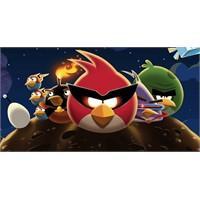 Angry Birds Space İndirilmeye Sunuldu