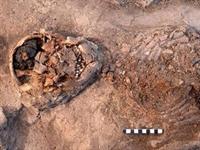 4 Bin Yıllık İnsan Beyni