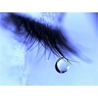 Aşk Umut, Gözyaşı...