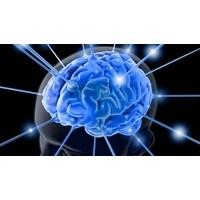 Beyin Gücünüzü Arttırın