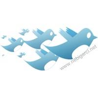 Twitter'da Takip Etmeden Takipçi Kazanın