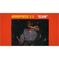 Çıktı : Wordpress 3.5 Elvin