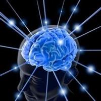 Beynimizin En Mükemmel Hali 5 Yıl Sürüyor