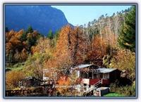 Adana İlinin Pozantı İlçesine Bağlı Bir Köyü - Bel