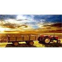 Hazine'ye Ait Tarım Arazileri Çiftçiye Satılıyor