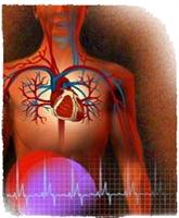 Kalp Hastası Olmamak İçin Öneriler