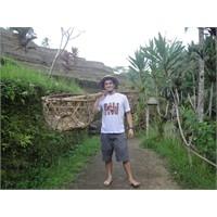 Bali Adası….
