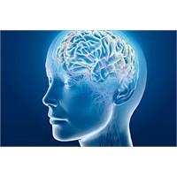Hafızayı Kuvvetlendiren 4 Besin