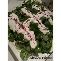 Vanilins'ten Semizotu Salatası