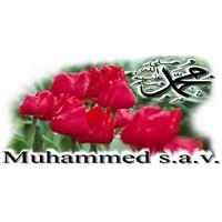 Peygamber Efendimizin Ramazan Sünnetleri