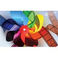Hamburg Film Festivali Başladı