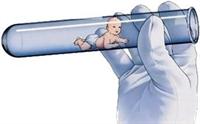 Tüp Bebeğin Cinsiyeti Tartışması