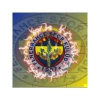 Fenerbahçe Harika Duvar Kağıtları!