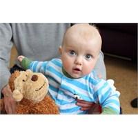 Bebekler Ve Maymunların İletişimi Benzer