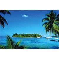 Tatil Cenneti Küba