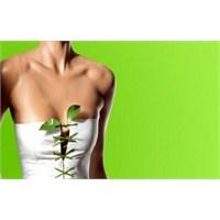 Bitki Çayları İle Zayıflama