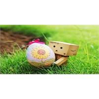 Sevgililer Günü Aşk Yumurtası