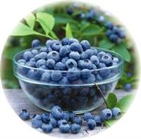 Yaban Mersini - Bilberry Extract Faydaları