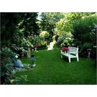 Muhteşem Yaz Bahçeleri