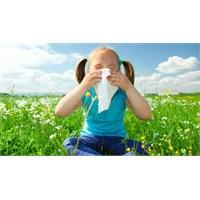 Bebeğinizde Polen Alerjisini Nasıl Önlersiniz?