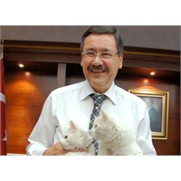 Akp'nin Video Sitesi Hacklendi