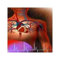 Kalp Sağlığımızı Nasıl Koruruz?