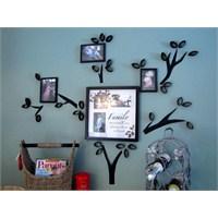 Dekoratif Soy Ağacı Yapımı