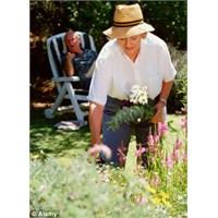 Emekliliğe Uyum Sağlama