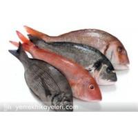 Balıkların Pullarını Ayıklamak için