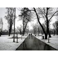 İstanbul'dan Yılın İlk Kar Fotoğrafları