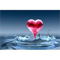 Su Ve Yaşam