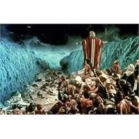 Musa'nın Pipisi