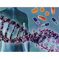 Hasta Hücreleri Temizleyen Protein Bulundu