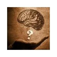 Beyin Hücresi Nasıl Artar ?