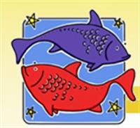 Balık Erkeğini Etkilemenin Yolları