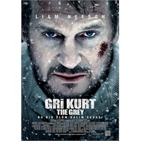 The Grey : Gri Kurtlar Ulurken